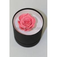 Стабилизированная роза в коробке (ярко-розовая) , фото 1