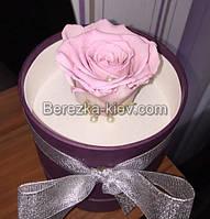 Стабилизированная роза в фиолетовой коробке (розовая)