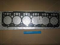 Прокладка головки блока Эталон Е-3 многослойная сталь (Rider). RD252501155336