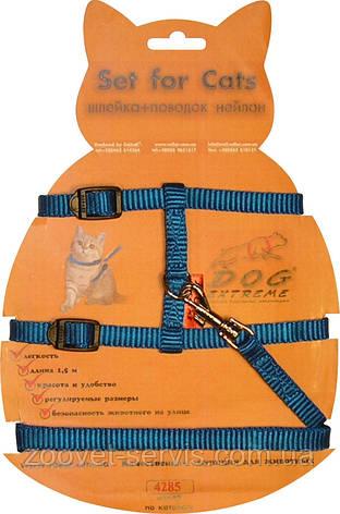 Шлея с поводком нейлоновая для котов синяя, фото 2