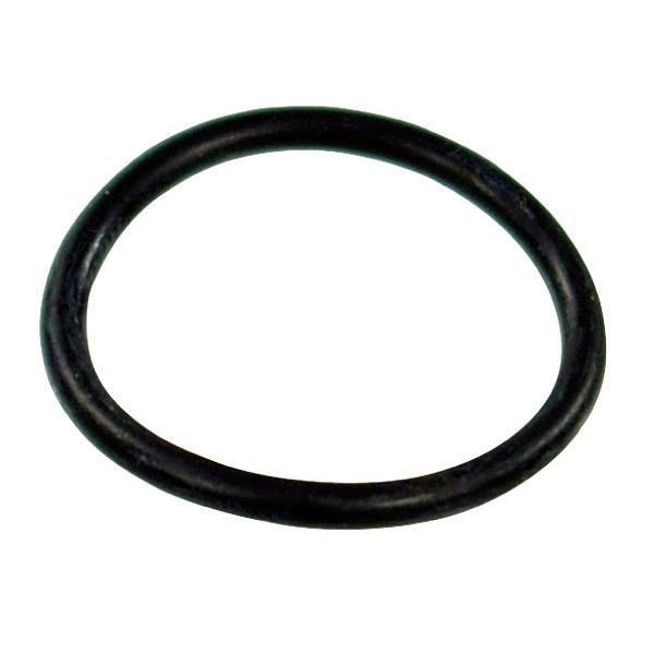 Кольцо упл. гайки фильтра всасывающего Д=40мм, G11/2 (29,2х3,0) (Arag, Италия)