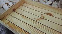 Ящик для рассады 60×40мм, фото 1