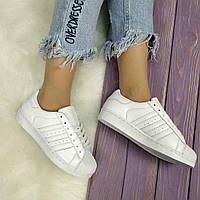 Женские кроссовки Adidas Superstar (36, 37, 38, 39, 40 размеры)