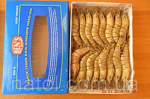 Креветка Черный тигр WILD, целая, размер 21/30, 20% глазури, производство Бангладеш