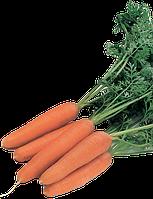 Рига Ф1 25 000 (калибр. < 1,6) сем. морковь РЦ