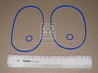 Ремкомплект масляного фильтра Камаз (2 наим.) синий силик. (ГарантАвто). 740-1017001