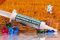 Мастисан А Форте 15 мл шприц туба для лечения мастита ХБФ