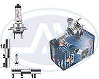 Лампа H7 24В 70Вт PX26d (Диалуч).
