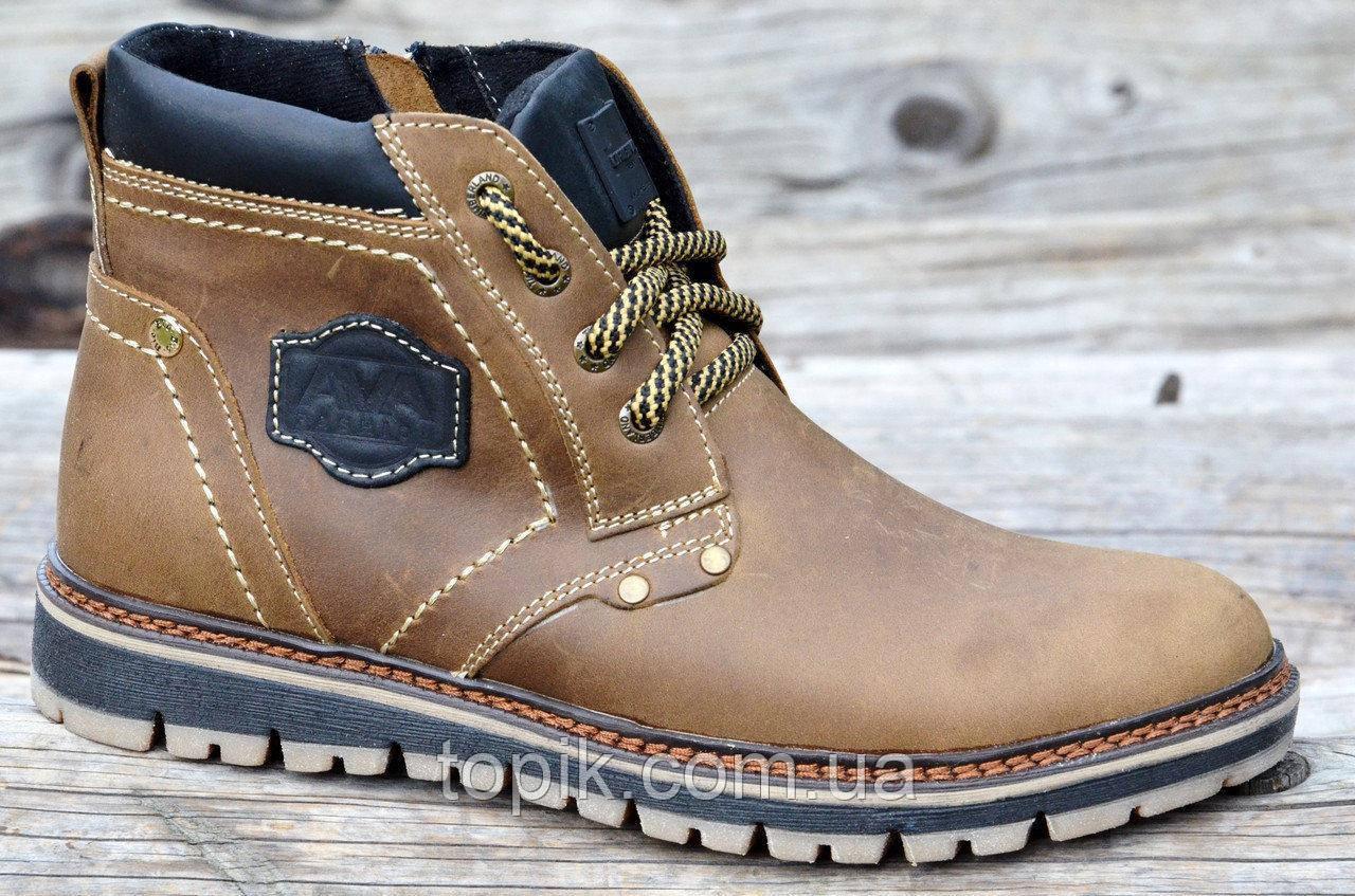 191108aca Зимние мужские ботинки на замке и шнурках, натуральная кожа, мех коричневые  2017 (Код: 912)