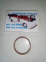 Кольцо уплотнительное выпускного коллектора  автобус Богдан А-091,А-092