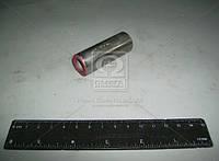 Палець поршневий ВАЗ 21100 клас 3 (пр-во АвтоВАЗ)
