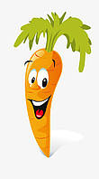 Семена моркови Спидо F1 25000сем.Hazera