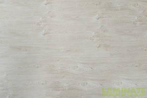 "Ламинат Spring Floor 32 класс ""Вяз Гранби"" 8 мм толщина, пачка - 2,4 м.кв, фото 3"