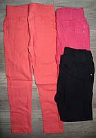 Котоновые брюки для девочек оптом, Taurus,98-128 рр., арт. X-0118#