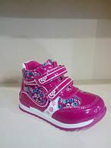 Демисезонные ботинки для девочки размер 24