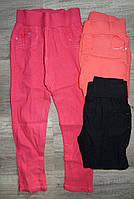 Котоновые брюки для девочек оптом, Taurus,98-128 рр., арт. X-0119#