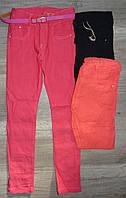 Котоновые брюки для девочек оптом, Taurus,134-164 рр., арт. X-0121#