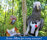 Прогулочный костюм памперс для жако, прогулочный костюм памперс для выгула птиц размер XL