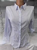 Блузка женская (стрейч-котон) весна-осень 8861 (цвет белый) оптом со склада