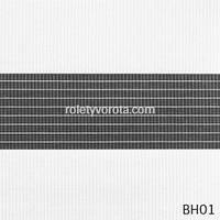 Жалюзи День-Ночь BH01 Белый Цвет