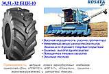 Сельхозшина 30.5L-32 Росава БЦК-10 нс18, фото 3