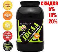 Stark Pharm - IBCAA 2-1-1 & Vit B6 - (1000 грамм) (160 порций)