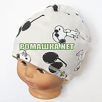 Детская весенняя, осенняя трикотажная шапочка р. 48-52 хорошо тянется 1143 Бежевый 52