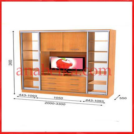 Шкаф купе ТВ-3  3000*550*2400  (Анабель), фото 2