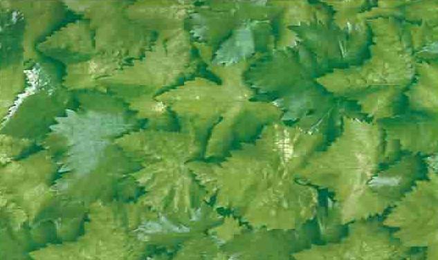 Самоклейка,лист, 67 см код 5495