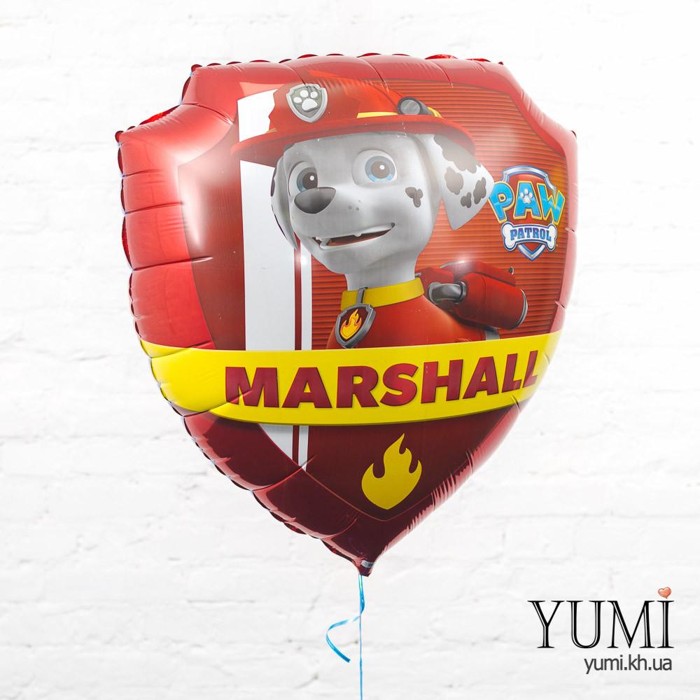Фольгированный шарик Чейз и Маршалл жетоны Щенячий патруль