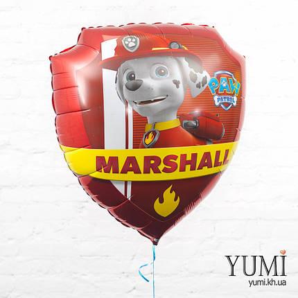Фольгированный шарик Чейз и Маршалл жетоны Щенячий патруль, фото 2