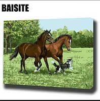 Живопись  40*50 гнедые лошади,  рисование по номерам, пара лошадей на лужайке