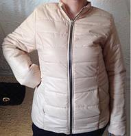 Женская куртка на синтепоне 200 Lenox (батал)  код 278