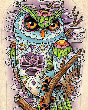 Алмазная вышивка Магическая сова, фото 2