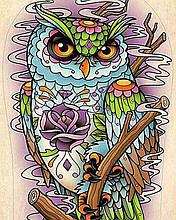 Алмазная вышивка Магическая сова