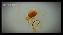Бойлы Winner Method Feeder Diffusion Pop-Up Micro Chunks 40g Hot Krill, фото 5