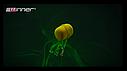 Бойлы Winner Method Feeder Diffusion Pop-Up Micro Chunks 40g Hot Krill, фото 6