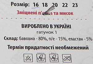 Носки детские деми ТМ Прилуки р. 16 девочка, фото 2