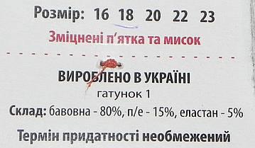 Носки детские деми ТМ Прилуки р. 18 мальчик, фото 3
