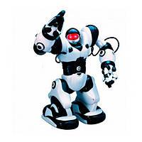 Робот TT313 / 28091