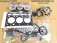 Ремонтный комплект двигателя Kubota D1503, фото 1