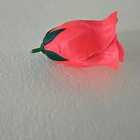 Бутон розы коралл