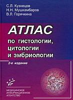 Атлас по гистологии, цитологии и эмбриологии. 2-е издание. Кузнецов С.Л., Мушкамбаров Н.Н., Горячкина В.Л.