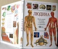 Людина. Навчальний посібник з анатомії та фізіології
