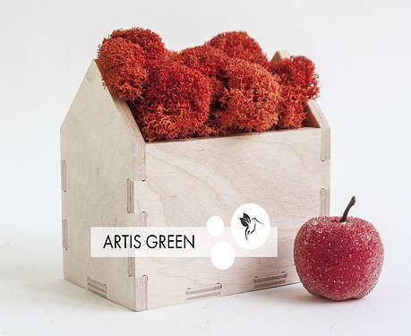 Новогодний корпоративный сувенир Moss Houses Red, фото 2