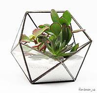 Флорариум Basket mini