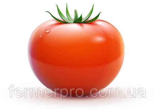 Семена томата 2280 F1 10000 семян  Heinz Seed