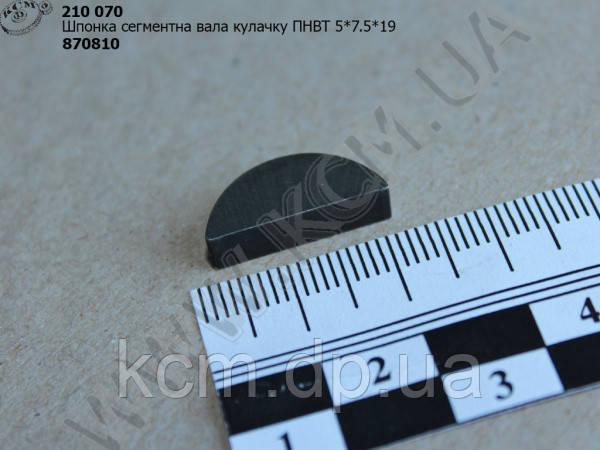 Шпонка сегментна вала кулачку ПНВТ (5*7.5*19) 870810