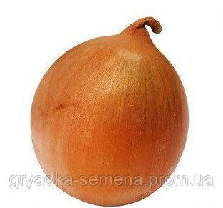 Лук Гермес F1 Allium Италия 1 кг