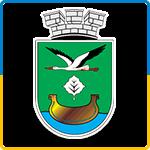 Дарницька районна в місті Києві державна адміністрація 31